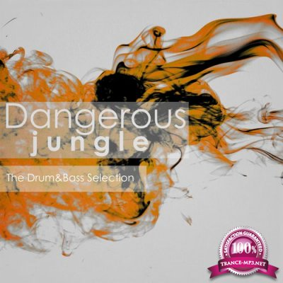 Dangerous Jungle: The Drum&Bass Selection (2015)