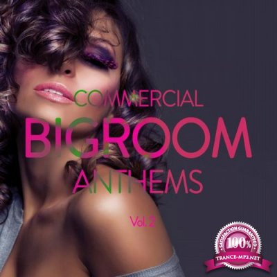 Commercial Bigroom Anthems, Vol. 2 (2016)