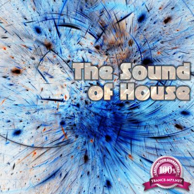 The Sound of House (2016)