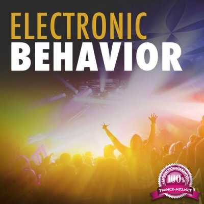 Electronic Behavior, Vol. 2 (2016)