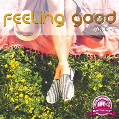 Feeling Good, Vol. 3 (Positive Chill Grooves) (2016)