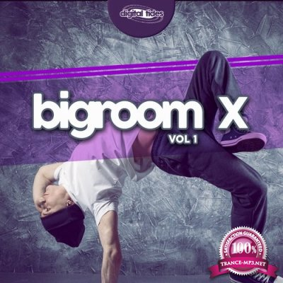 Bigroom X, Vol. 1 (2016)