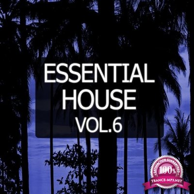 Essential House, Vol. 6 (2016)