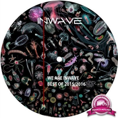 We Are Inwave Best Of 2015/2016 (2016)