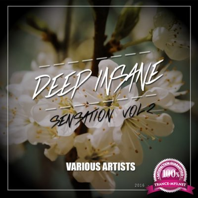Deep Insane Sensation, Vol. 2 (2016)
