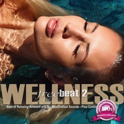 Wellness Freebeat Vol.2 (Best Of Relaxing Ambient And Nu Spa Chillout Sounds) (2016)