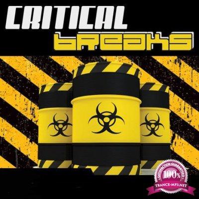 Critical Breaks Vol. 12 (2017)