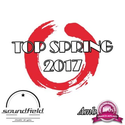 Ambient Top Spring 2017 (2017)