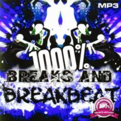 1000 % BreakBeat Vol. 128 (2017)