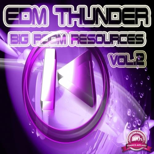 EDM Thunder, Big Room Resources Vol.2 (2017)