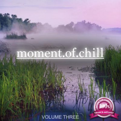 Moment Of Chill, Vol. 3 (2017)