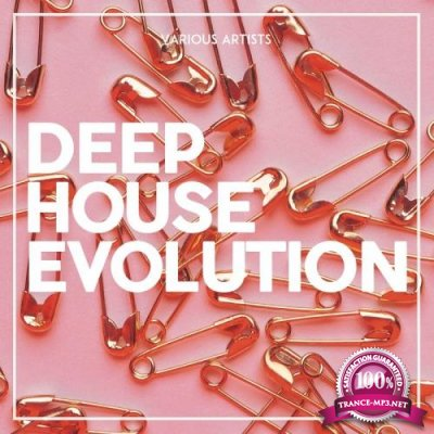 Deep House Evolution (2017)