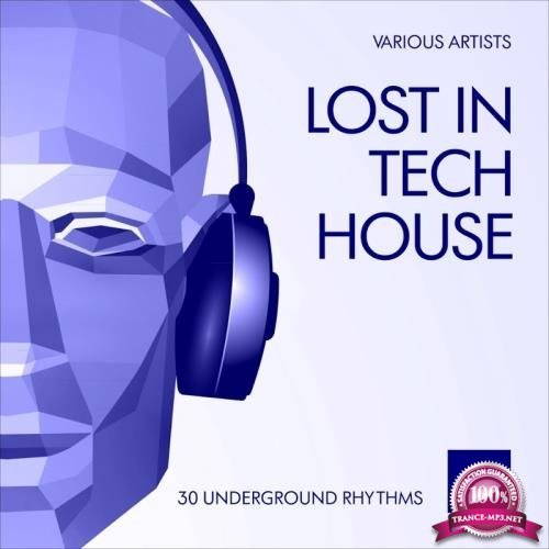 Lost In Tech House (30 Underground Rhythms), Vol. 2 (2017)