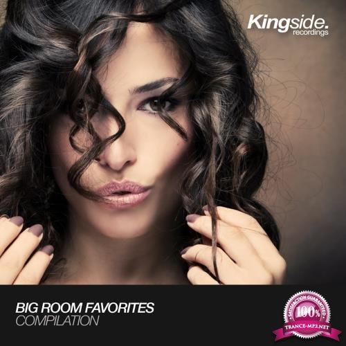 Big Room Favorites (Volume 1) (2017)