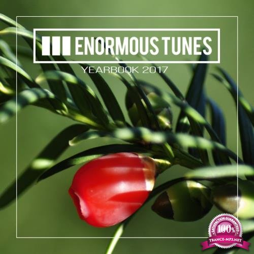 Enormous Tunes-Yearbook 2017 (2017)