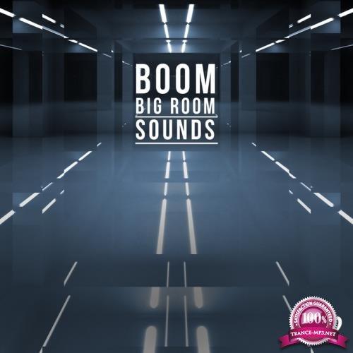 Boom, Vol. 2 - Big Room Sounds (2017)