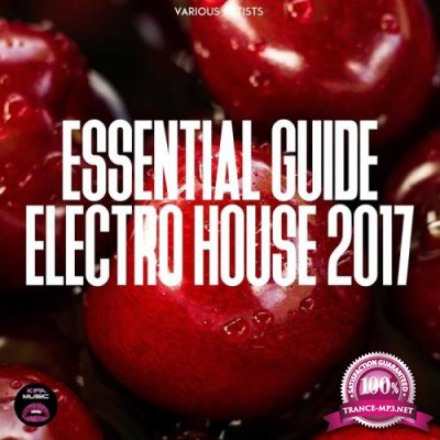 Essential Guide Electro House 2017 (2017)