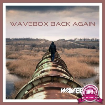 Wavebox Back Again (2017)