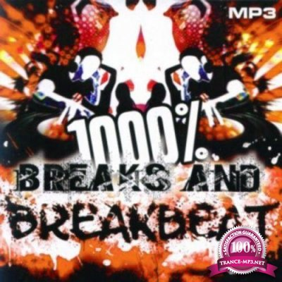 1000 % BreakBeat Vol. 169 (2017)