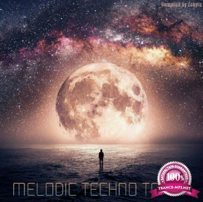 Melodic Techno Tom V (2017)