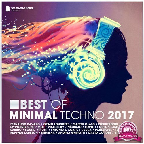 Big Mama's House - Best of Minimal Techno 2017 (2018)