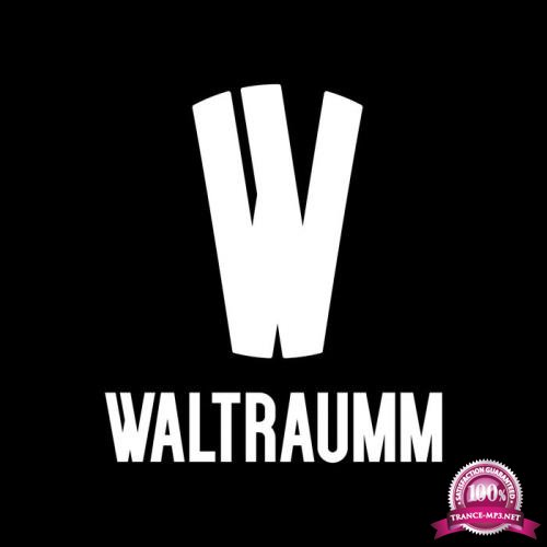 One Year With Waltraumm (2017) FLAC
