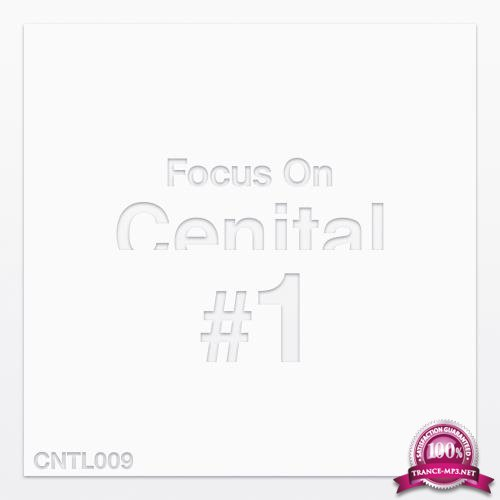 Focus on Cenital, Vol. 1 (2018)