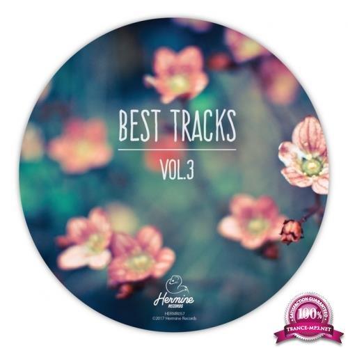 Best Tracks, Vol. 3 (2018) FLAC