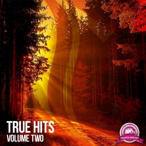 Suanda True - True Hits Vol 2 (2018)