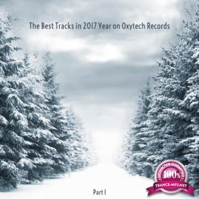 The Best Tracks In 2017 Year On Oxytech Records Part I (2018)