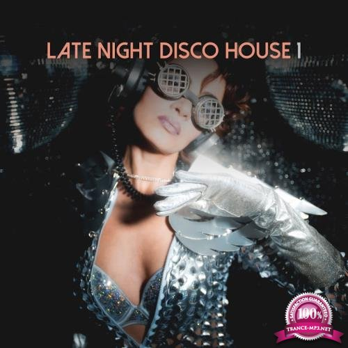 House Place - Late Night Disco House, Vol. 1 (2018)