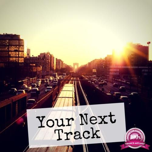Your Next Track, Vol. 13 (2018)