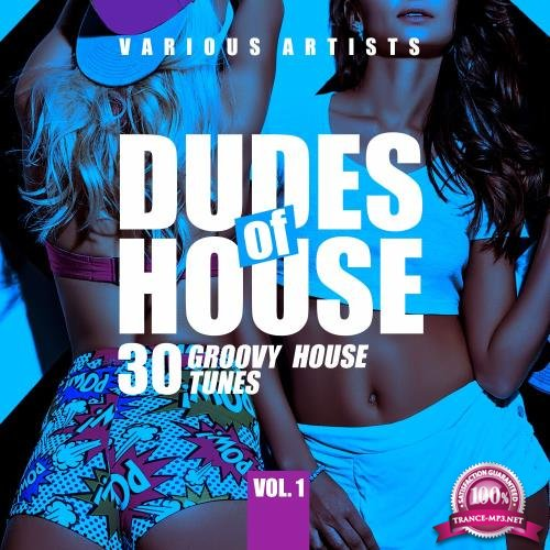 Dudes of House (30 Groovy House Tunes), Vol. 1 (2018)