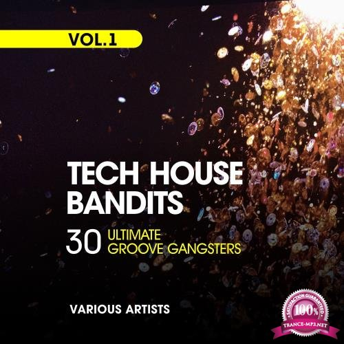 Tech House Bandits, Vol. 1 (30 Ultimate Groove Gangsters) (2018)
