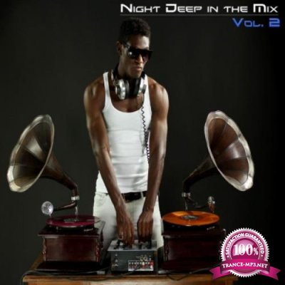Night Deep in the Mix, Vol. 2 (2018)