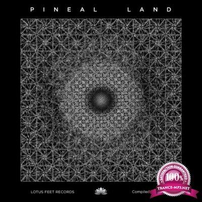 Pineal Land (2018)