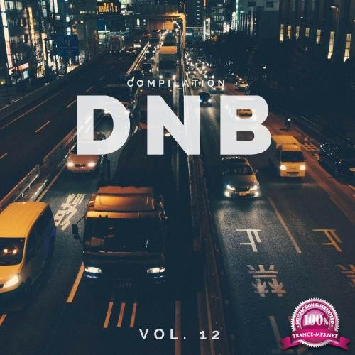 DnB Music Compilation, Vol. 12 (2018)