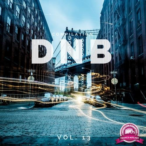 Dnb Music Compilation, Vol. 13 (2018)