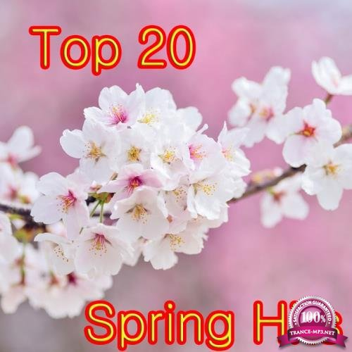 Top 20 Spring Hits (2018)