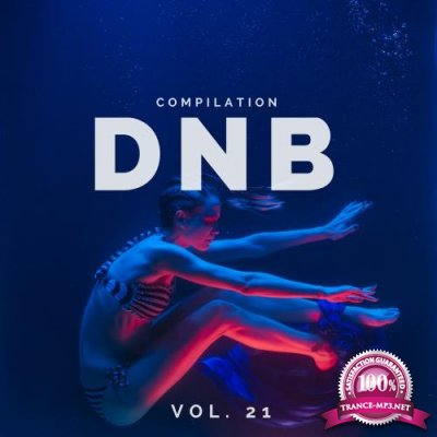 DnB Music Compilation, Vol. 21 (2018)