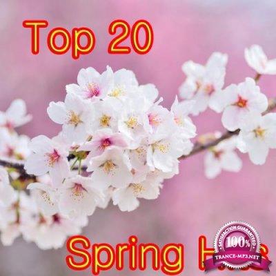 Top 20 Spring Hits (2018)