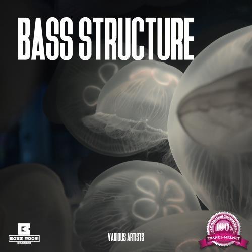 Bass Structure (2018)