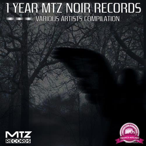 1 Year MTZ Noir Records (2018)