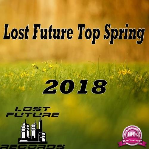Lost Future Top Spring 2018 (2018)