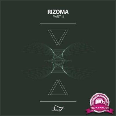 Rizoma 3 (2018)