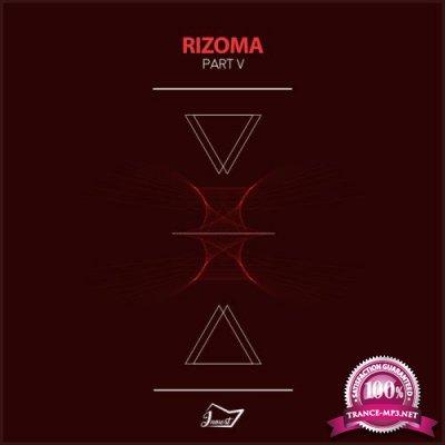 Rizoma 5 (2018)