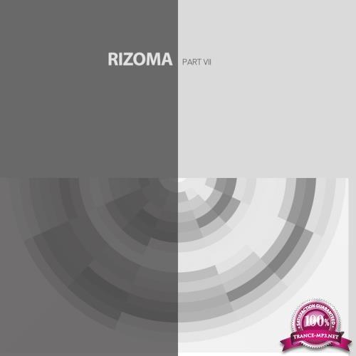Rizoma 7 (2018)