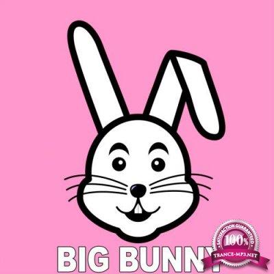 Big Bunny - Vanity (2018)