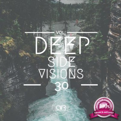 Deep Side Visions, Vol. 30 (2018)