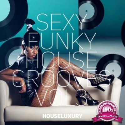 Sexy Funky House Grooves Vol. 3 (2018)